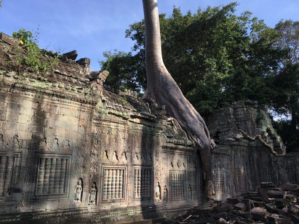 Cambodge Angkor Wat Temples