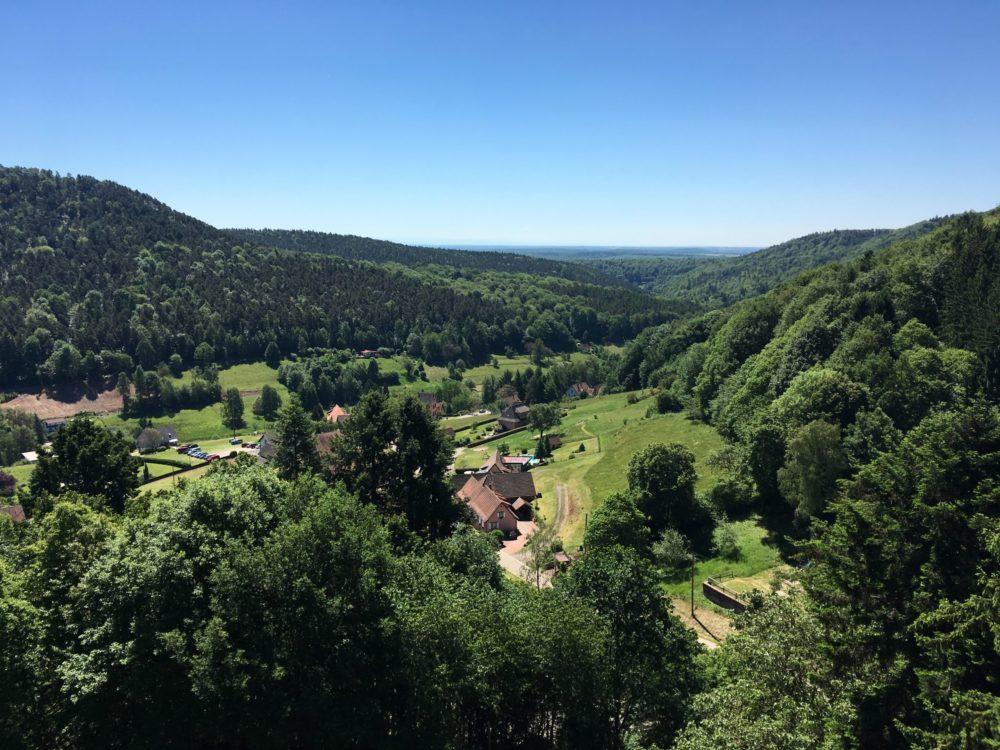 Alsace Vosges Chateau Randonnée