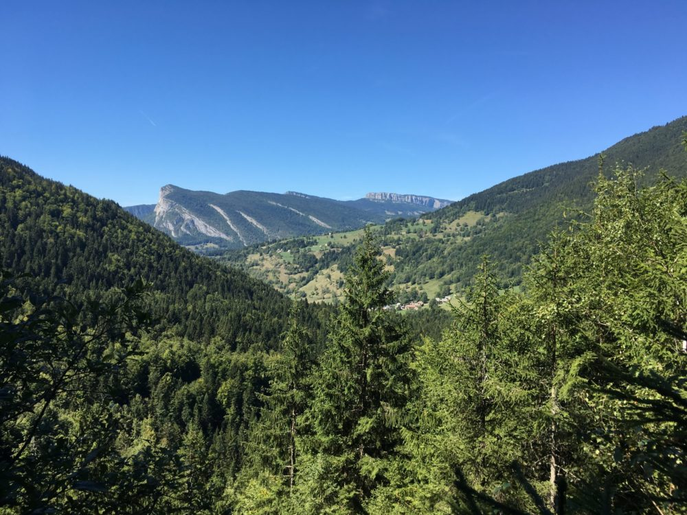Chartreuse Alpes Paysage